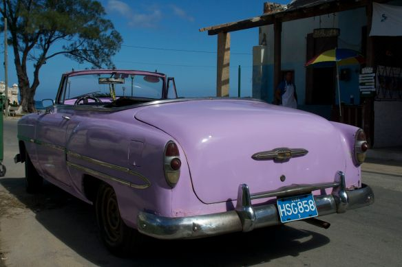 The lavender shade of this car was perfect for the hot sunny days.