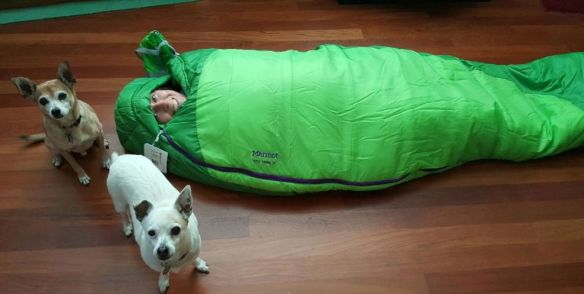 LeMans Kiera boys sleeping bag