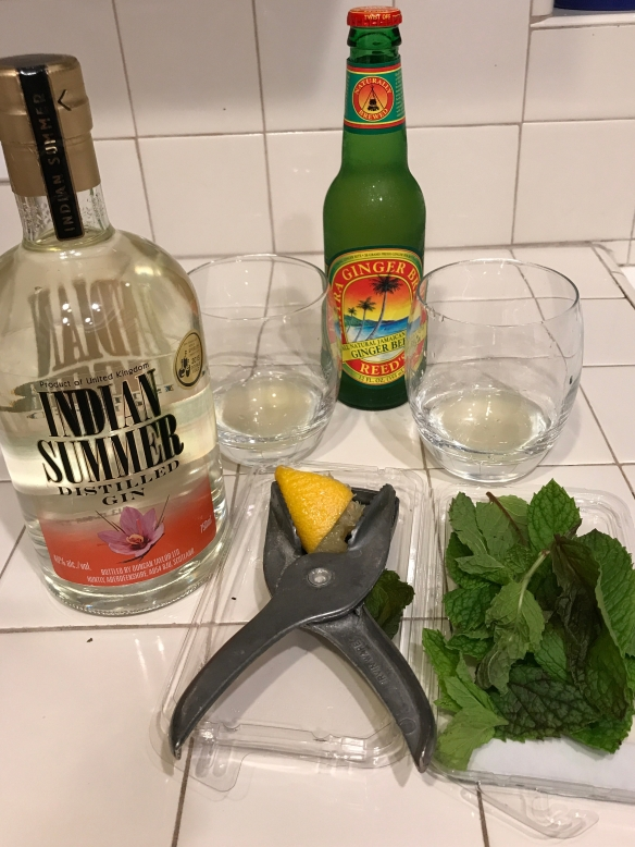The Indian Spice cocktail with Trader Joe's Extra Ginger Beer
