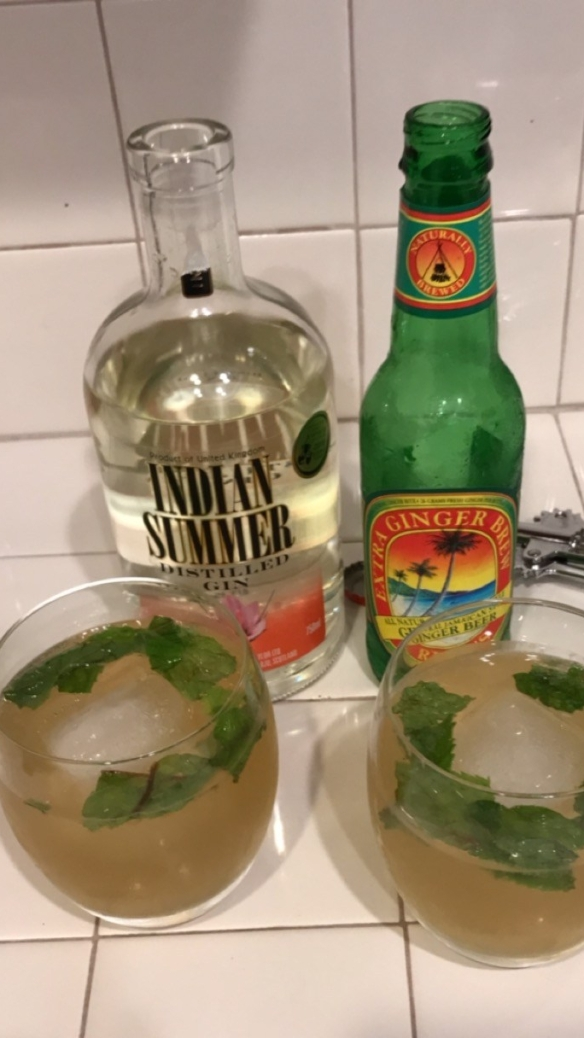 Indian Spice cocktail with ginger beer from Trader Joe's and Indian Summer gin