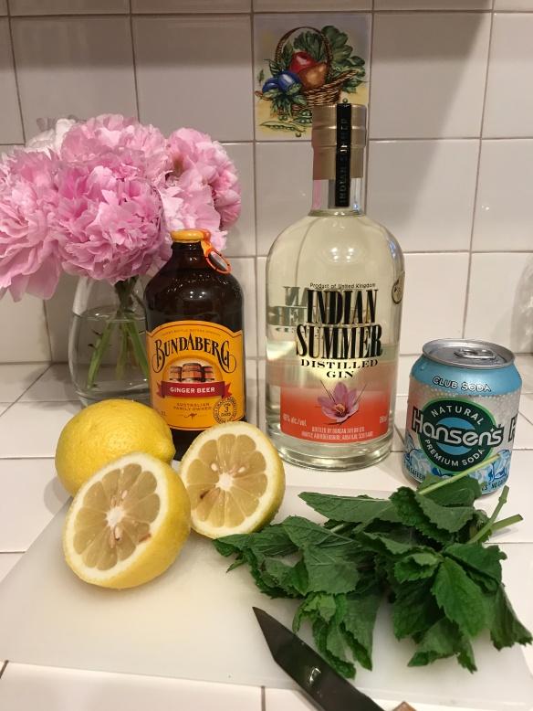 Indian Summer gin, mint, lemon, ginger beer, club soda