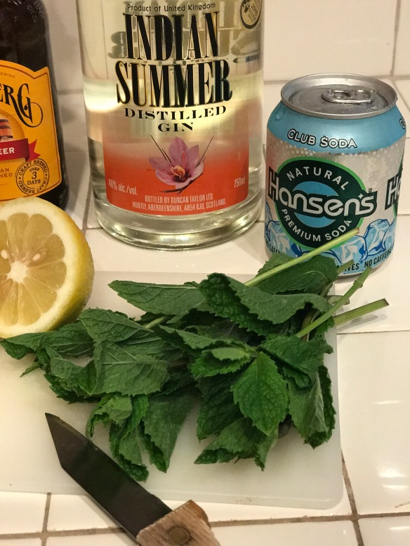 Fresh mint for Indian Spice gin cocktail